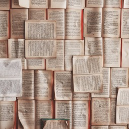 the best books I read this month – january 2018
