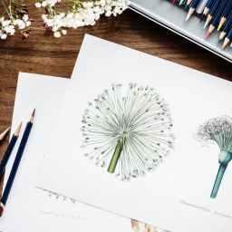 hobbies and minimalism