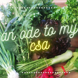 an ode to my CSA