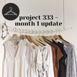 fall project 333 – one month update