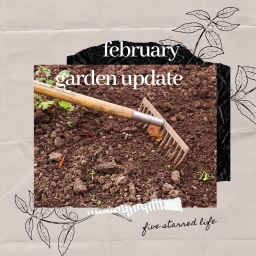 garden with me – february update