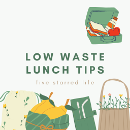 low waste lunches
